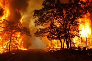فیلم/ رانندگی در جهنمی از آتش و دود در کالیفرنیا