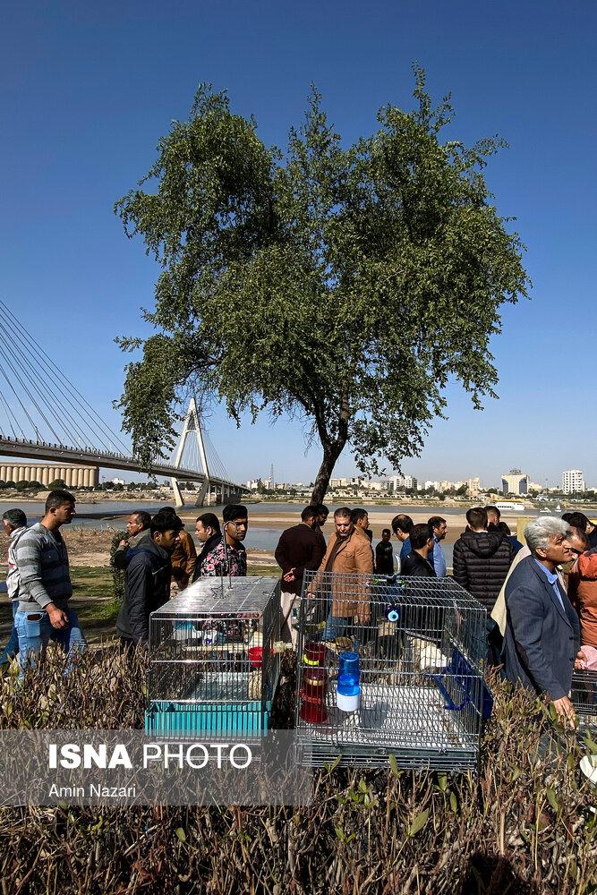 بازار پرنده فروشان اهواز